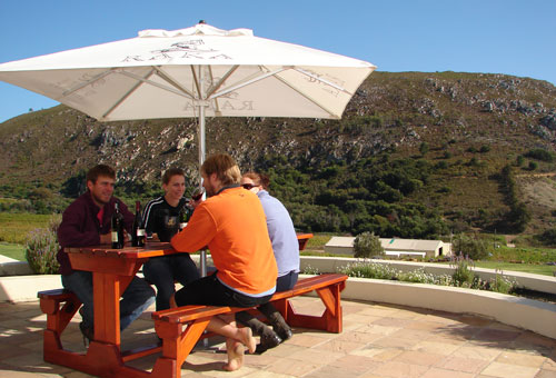 things-to-do-wine-tours.jpg