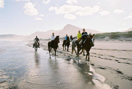things-to-do-day-trips-beach-horse-riding.jpg