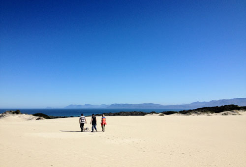 things-to-do-hikes-walks-walker-bay-nature-reserve.jpg